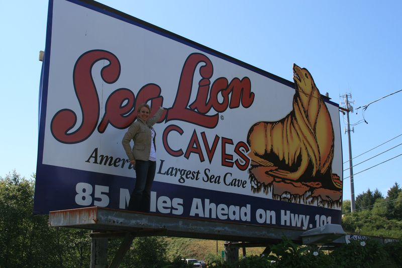 Sealioncaves